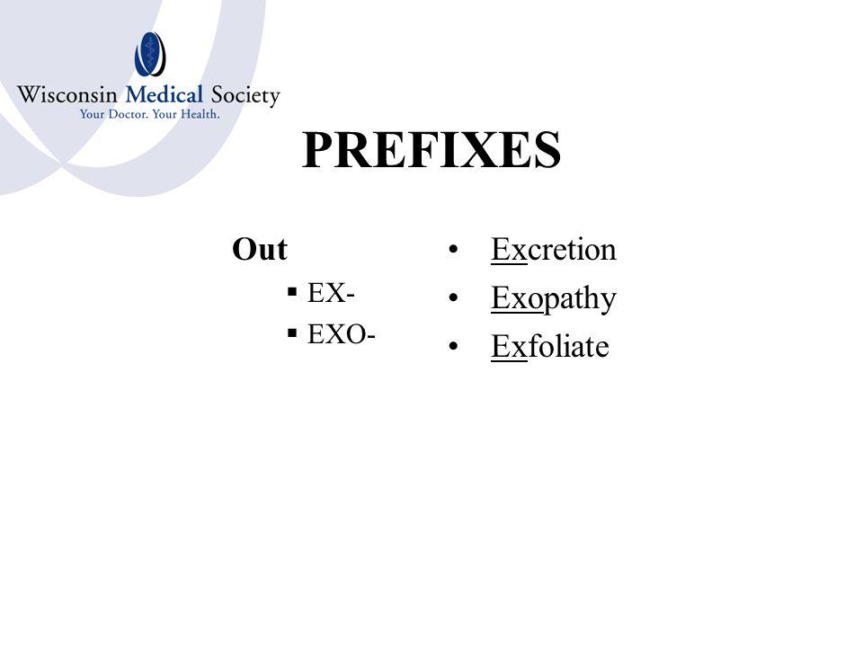 PREFIXES Above  EPI- Epiglottis Epidermis Epistaxis