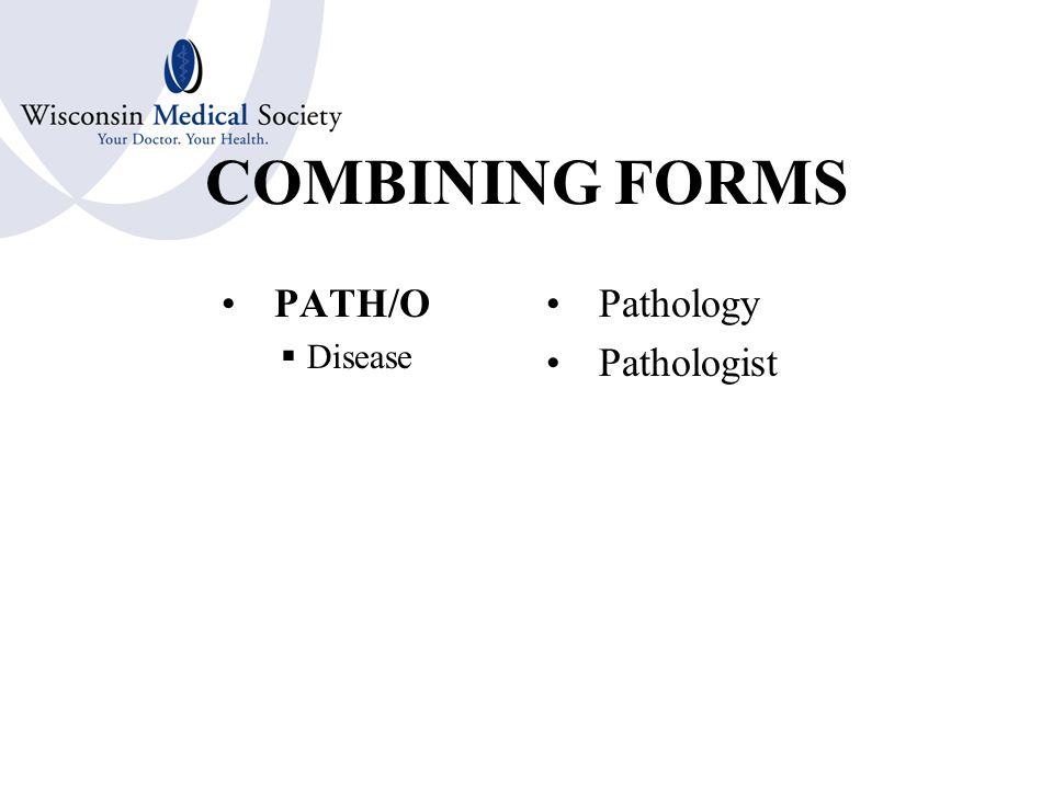 COMBINING FORMS LEUK/O  White Leukemia Leukocytosis