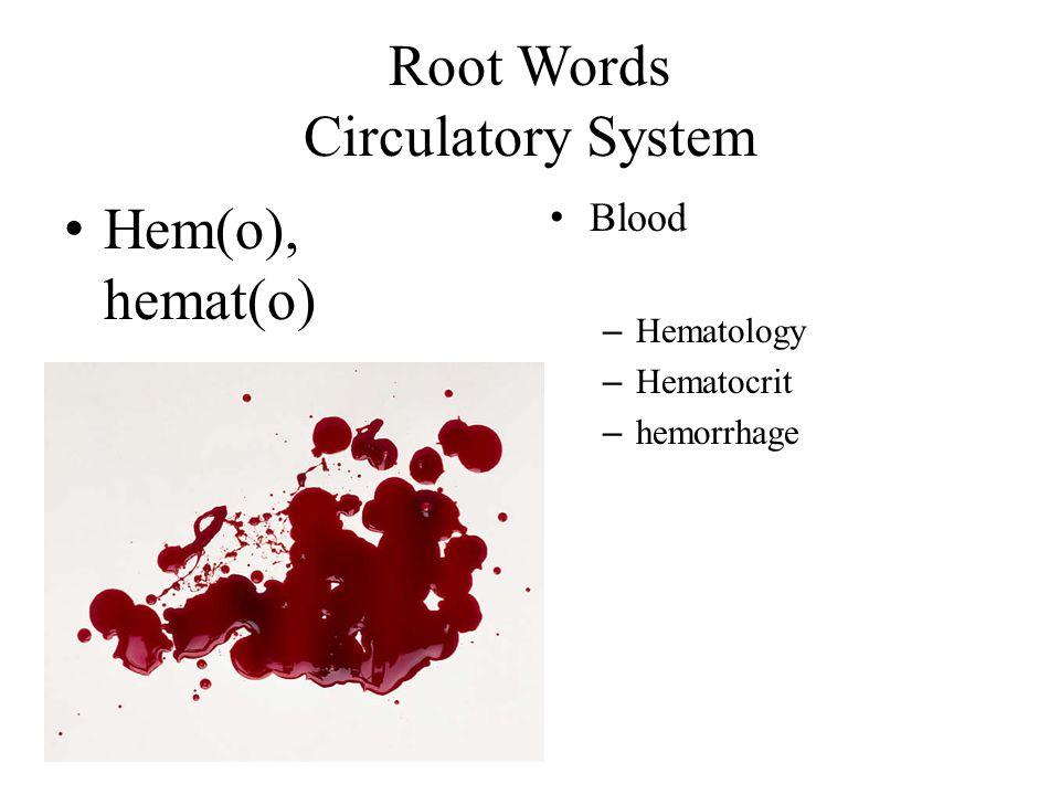 Root Words Circulatory System Hem(o), hemat(o) Blood – Hematology – Hematocrit – hemorrhage