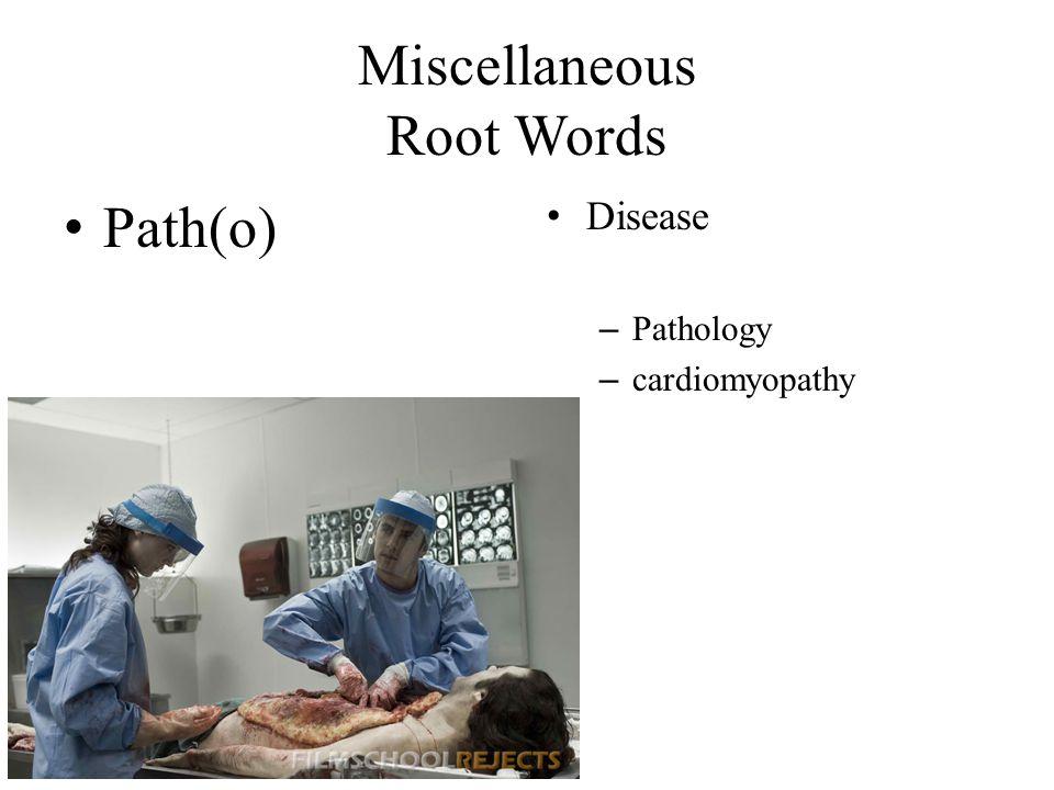 Miscellaneous Root Words Path(o) Disease – Pathology – cardiomyopathy