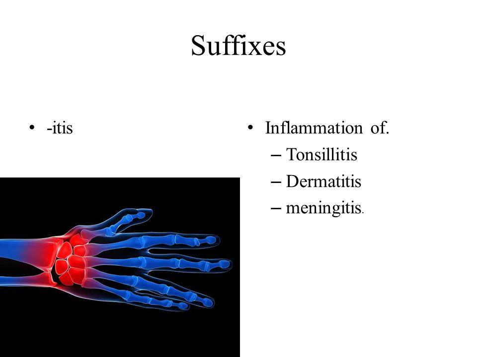 Suffixes -itis Inflammation of. – Tonsillitis – Dermatitis – meningitis.