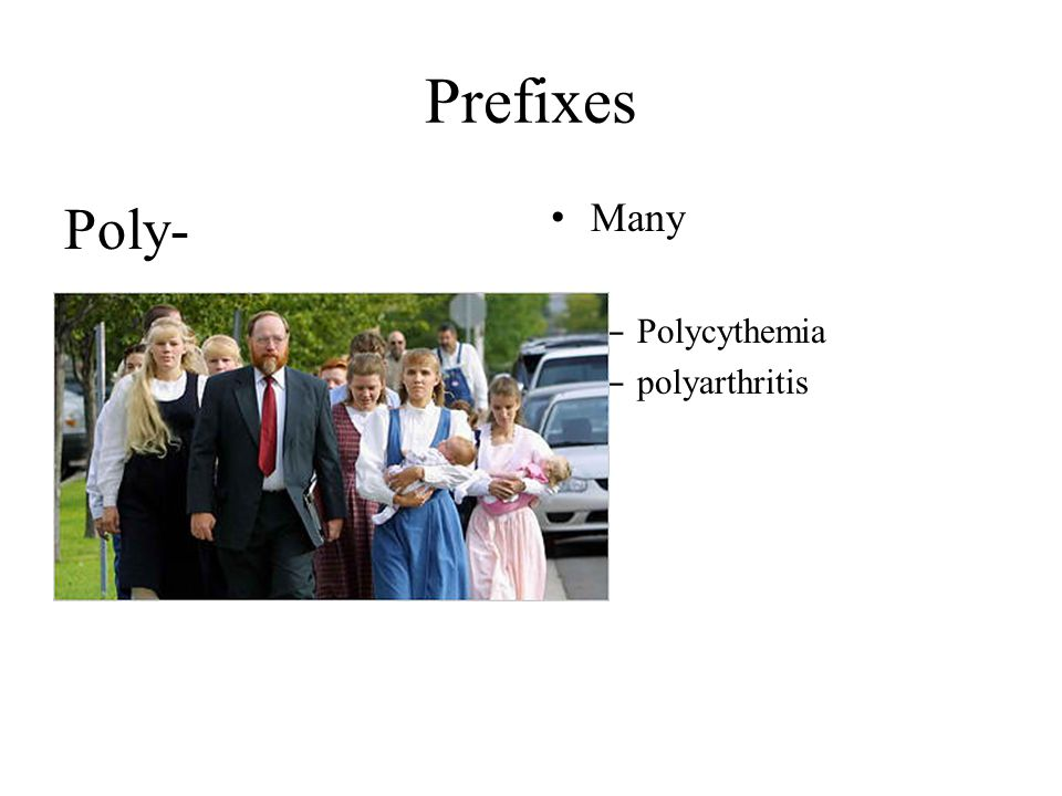 Prefixes Poly- Many – Polycythemia – polyarthritis