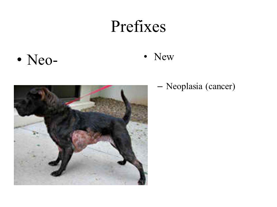 Prefixes Neo- New – Neoplasia (cancer)