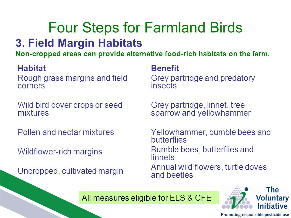 Four Steps for Farmland Birds Habitat Rough grass margins and field corners Wild bird cover crops or seed mixtures Pollen and nectar mixtures Wildflower-rich margins Uncropped, cultivated margin Benefit Grey partridge and predatory insects Grey partridge, linnet, tree sparrow and yellowhammer Yellowhammer, bumble bees and butterflies Bumble bees, butterflies and linnets Annual wild flowers, turtle doves and beetles 3.