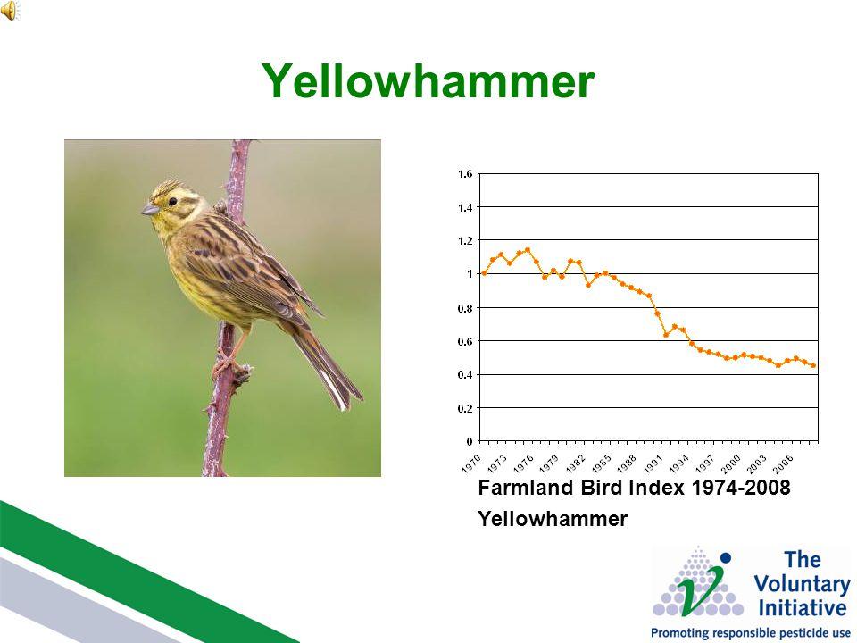 Yellowhammer Farmland Bird Index 1974-2008 Yellowhammer