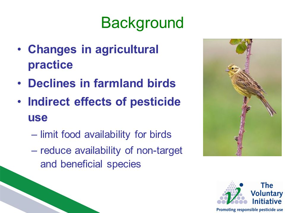 Background Changes in agricultural practice Declines in farmland birds Indirect effects of pesticide use –limit food availability for birds –reduce availability of non-target and beneficial species