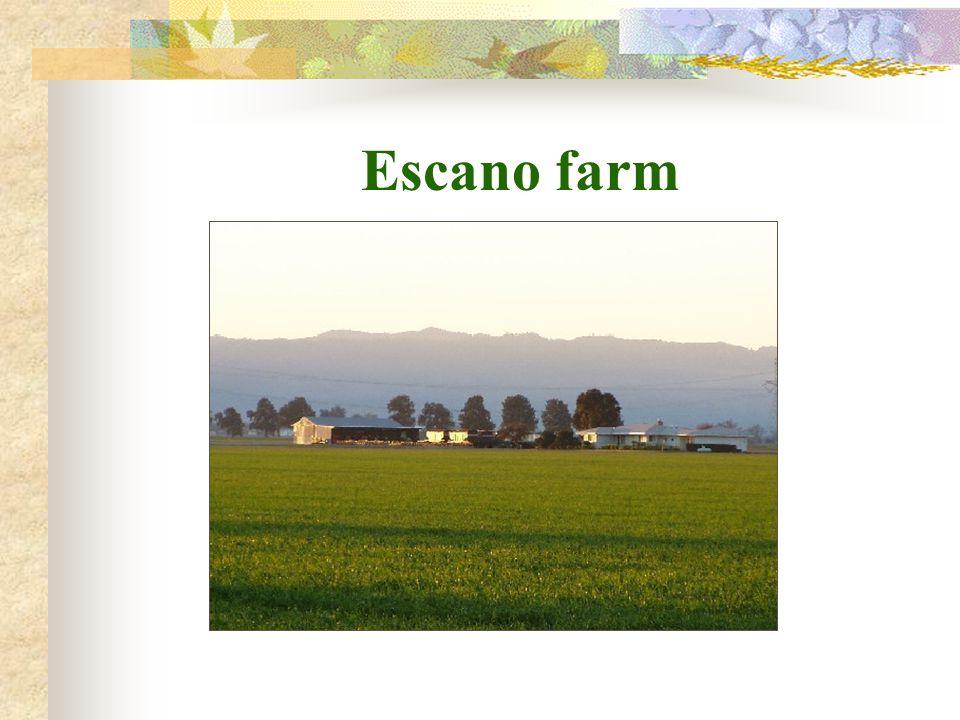Escano farm
