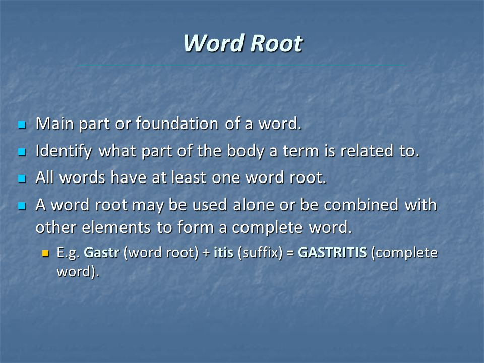 Word Root Main part or foundation of a word. Main part or foundation of a word.