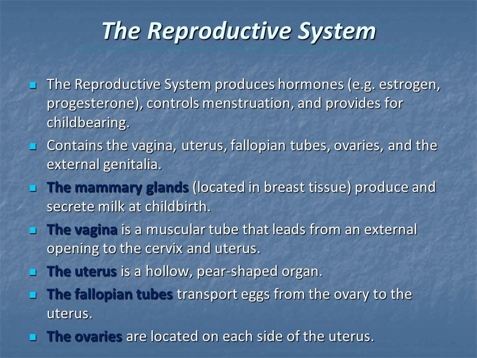 The Reproductive System The Reproductive System produces hormones (e.g.
