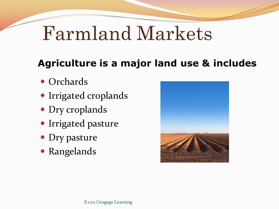 Farmland Markets Orchards Irrigated croplands Dry croplands Irrigated pasture Dry pasture Rangelands ©2011 Cengage Learning Agriculture is a major land use & includes