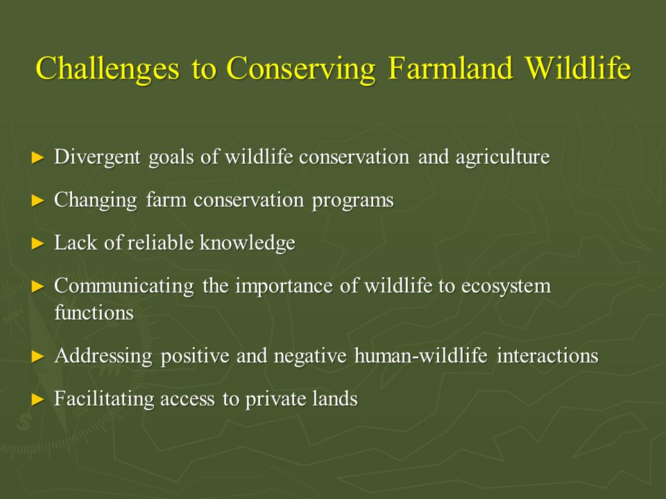 Challenges to Conserving Farmland Wildlife ► Divergent goals of wildlife conservation and agriculture ► Changing farm conservation programs ► Lack of reliable knowledge ► Communicating the importance of wildlife to ecosystem functions ► Addressing positive and negative human-wildlife interactions ► Facilitating access to private lands