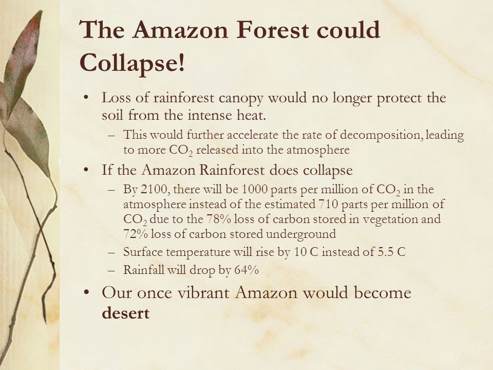 The Amazon Forest could Collapse.