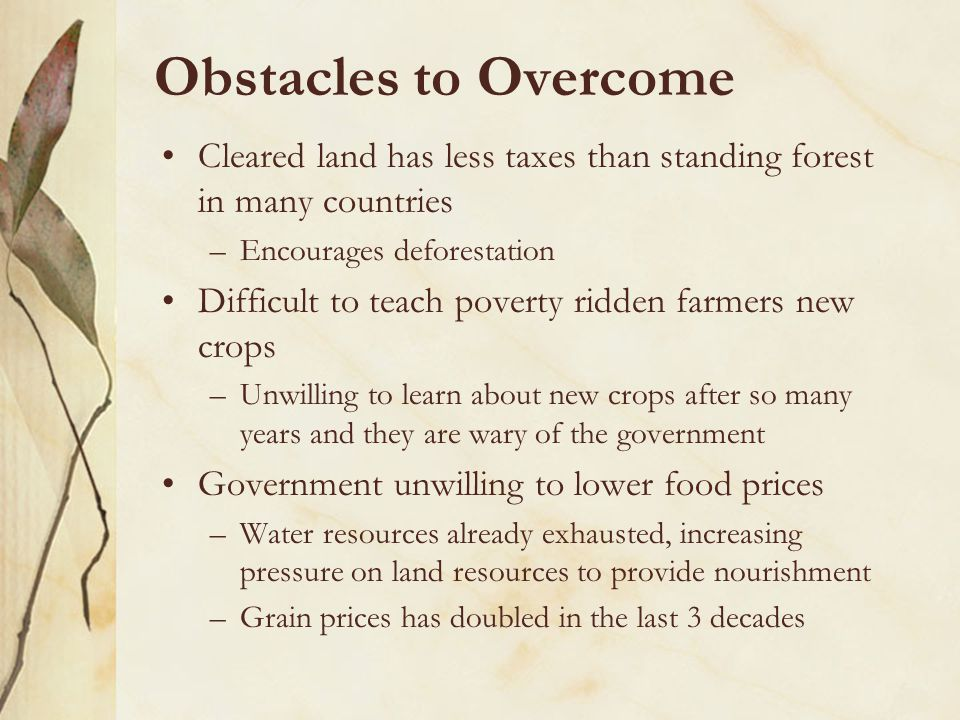 Obstacles to Overcome Cleared land has less taxes than standing forest in many countries –Encourages deforestation Difficult to teach poverty ridden farmers new crops –Unwilling to learn about new crops after so many years and they are wary of the government Government unwilling to lower food prices –Water resources already exhausted, increasing pressure on land resources to provide nourishment –Grain prices has doubled in the last 3 decades