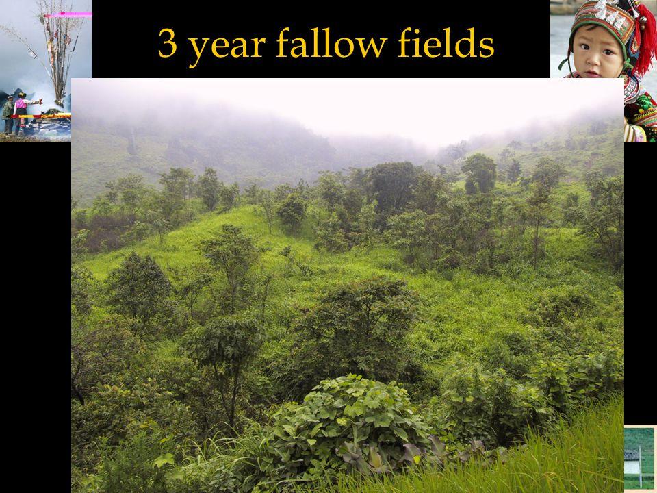 3 year fallow fields