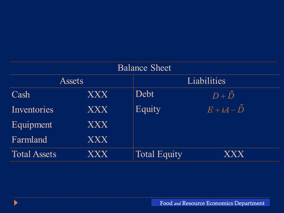 Balance Sheet AssetsLiabilities CashXXX Debt InventoriesXXX Equity EquipmentXXX FarmlandXXX Total AssetsXXXTotal EquityXXX