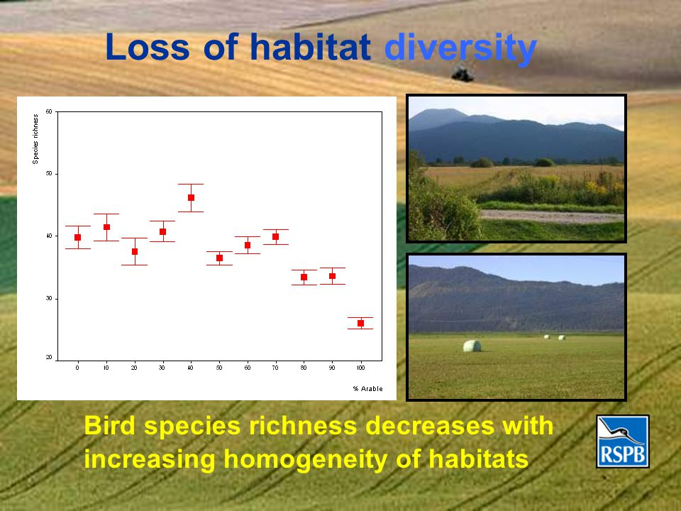 Loss of habitat diversity Bird species richness decreases with increasing homogeneity of habitats