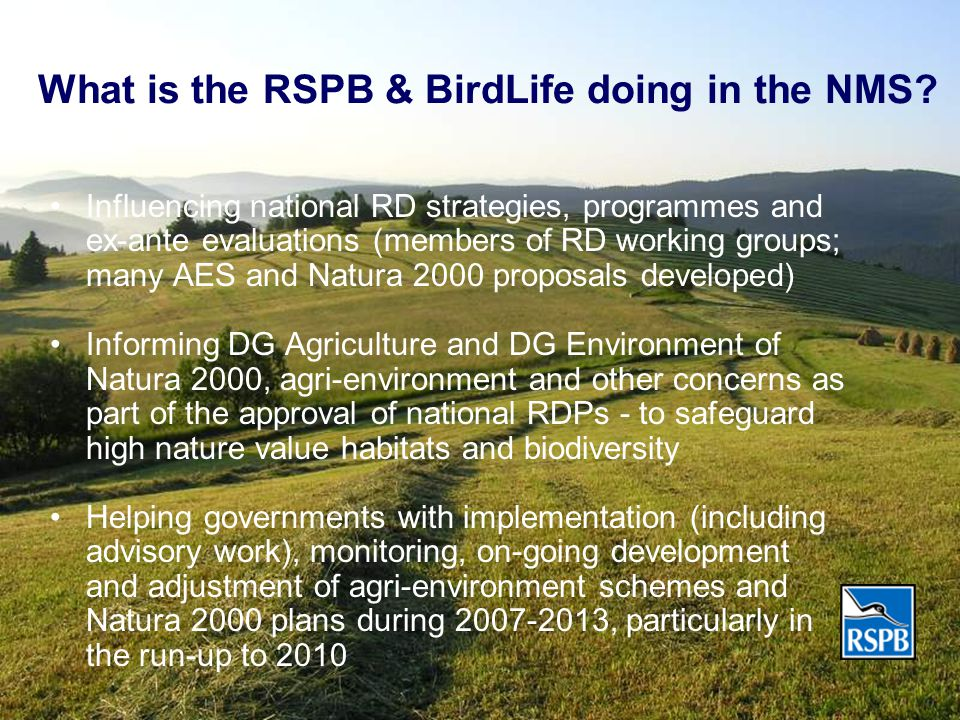 What is the RSPB & BirdLife doing in the NMS.