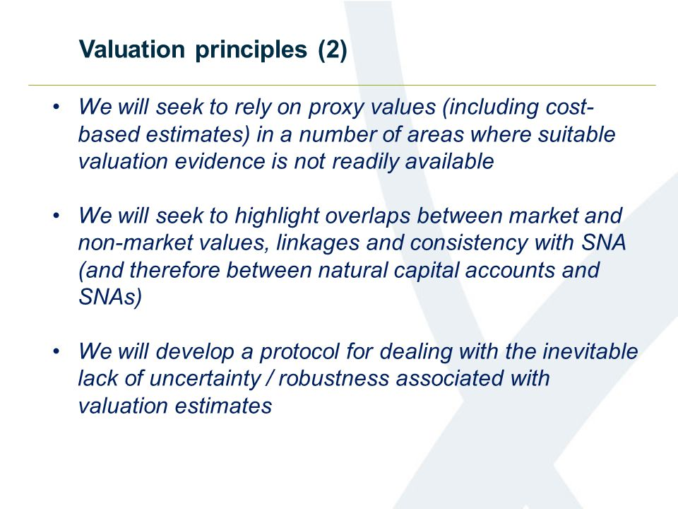 We will seek to rely on proxy values (including cost- based estimates) in a number of areas where suitable valuation evidence is not readily available