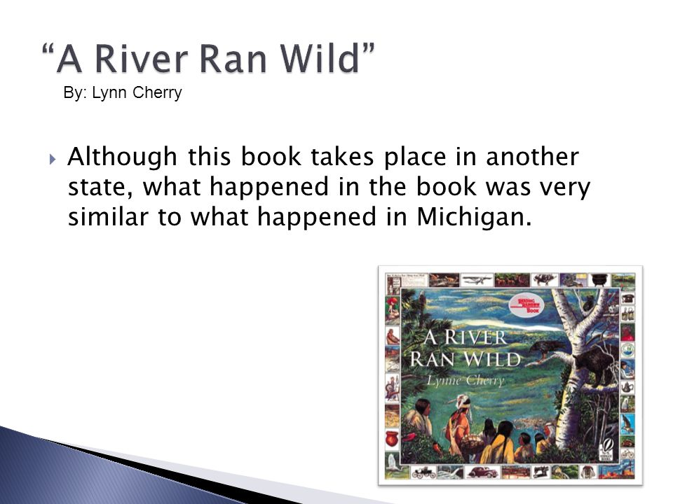  Although this book takes place in another state, what happened in the book was very similar to what happened in Michigan.
