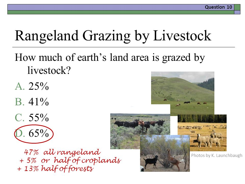 Rangeland Grazing by Livestock How much of earth's land area is grazed by livestock.