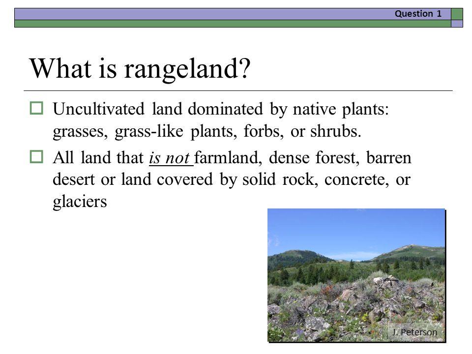 What is rangeland.
