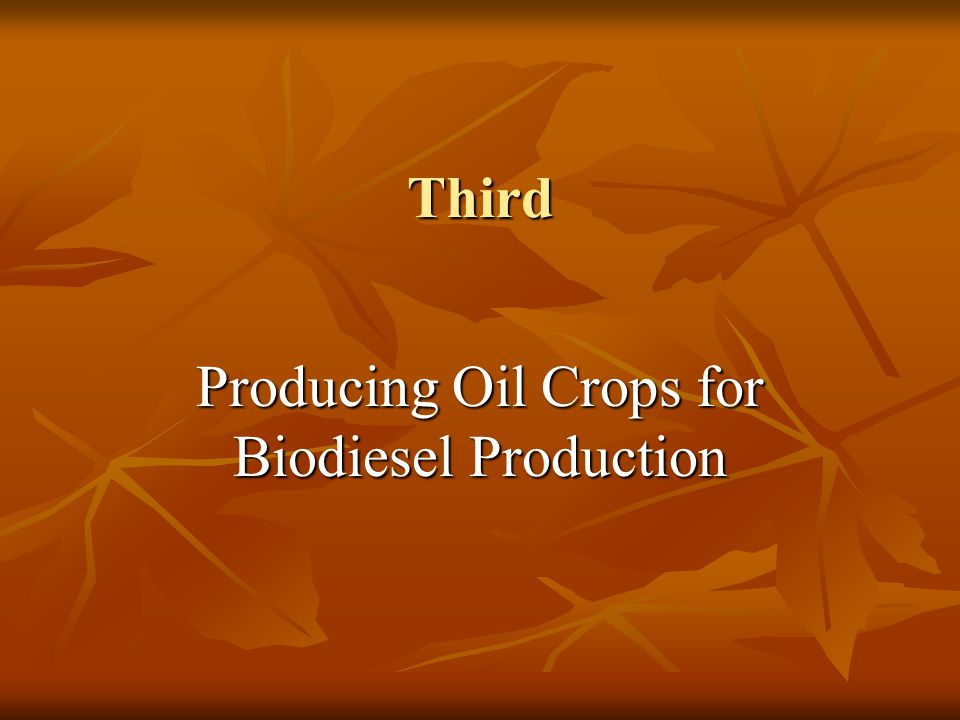 Third Producing Oil Crops for Biodiesel Production