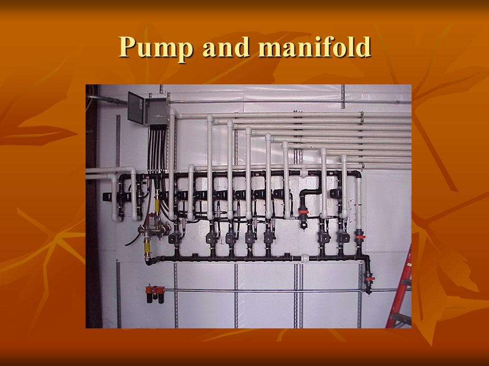 Pump and manifold