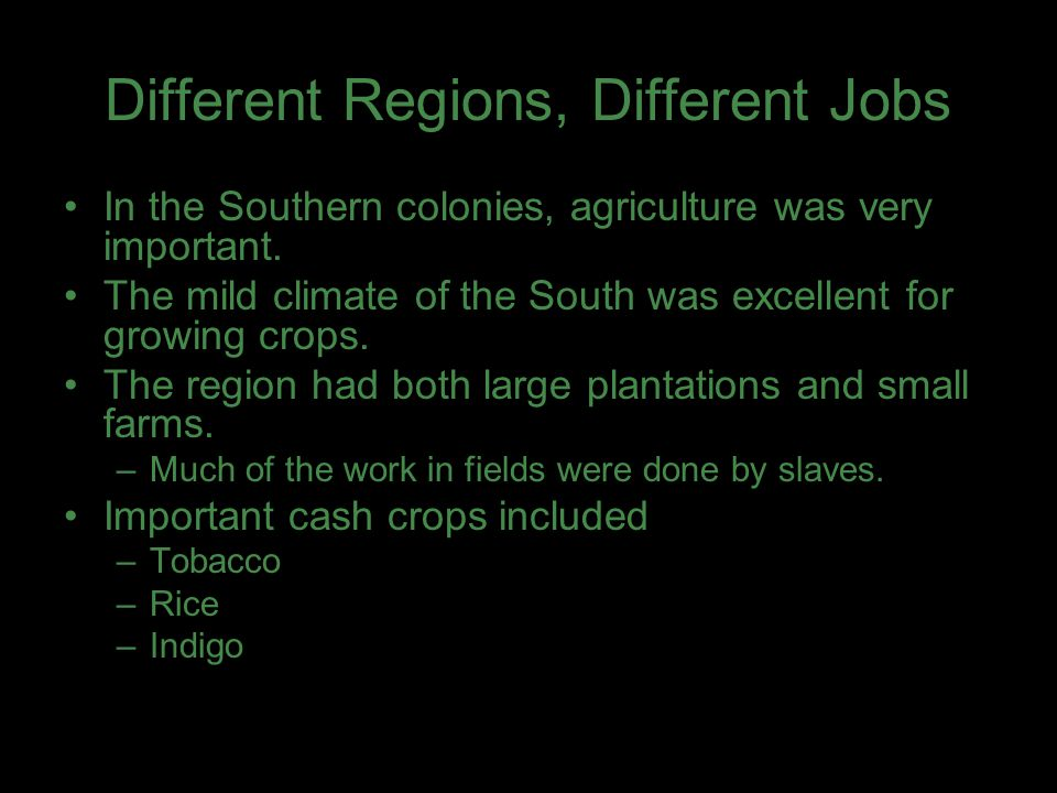 Different Regions, Different Jobs In the Southern colonies, agriculture was very important. The mild climate of the South was excellent for growing cr
