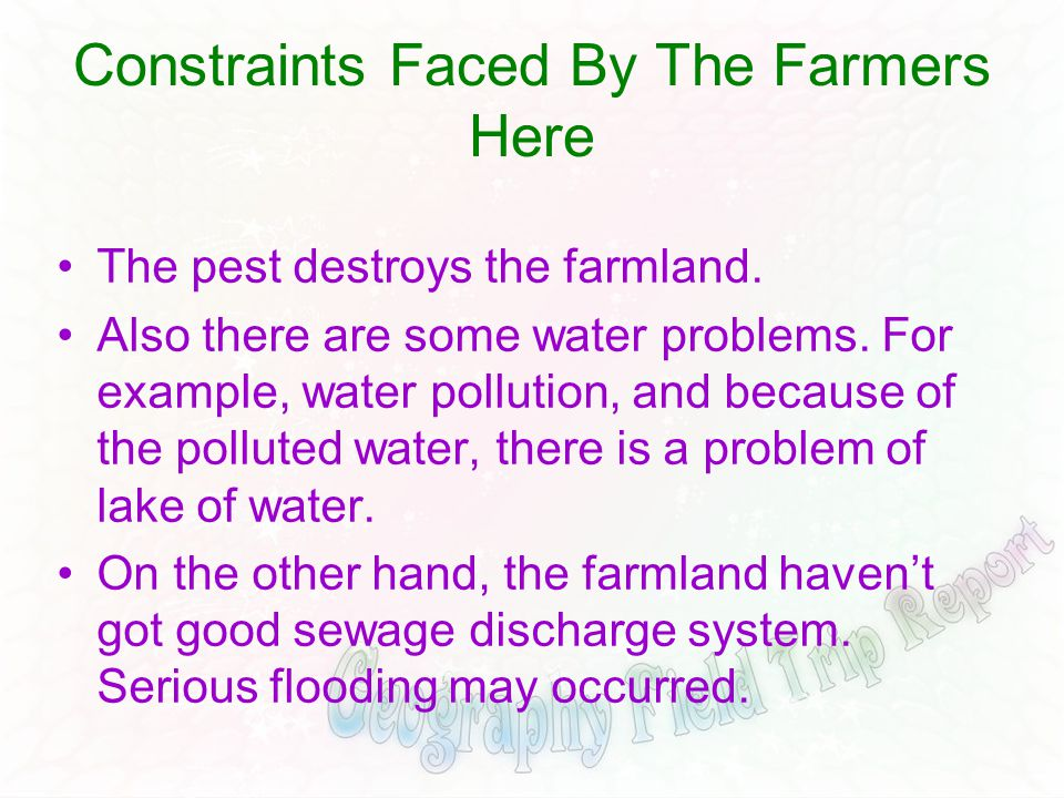 Constraints Faced By The Farmers Here The pest destroys the farmland. Also there are some water problems. For example, water pollution, and because of