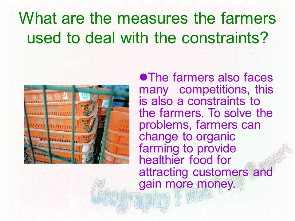 What are the measures the farmers used to deal with the constraints? The farmers also faces many competitions, this is also a constraints to the farme
