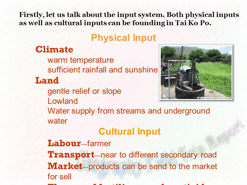 Physical Input Climate warm temperature sufficient rainfall and sunshine Land gentle relief or slope Lowland Water supply from streams and underground water Cultural Input Labour --- farmer Transport --- near to different secondary road Market --- products can be send to the market for sell The use of fertilizers and pesticides Firstly, let us talk about the input system.