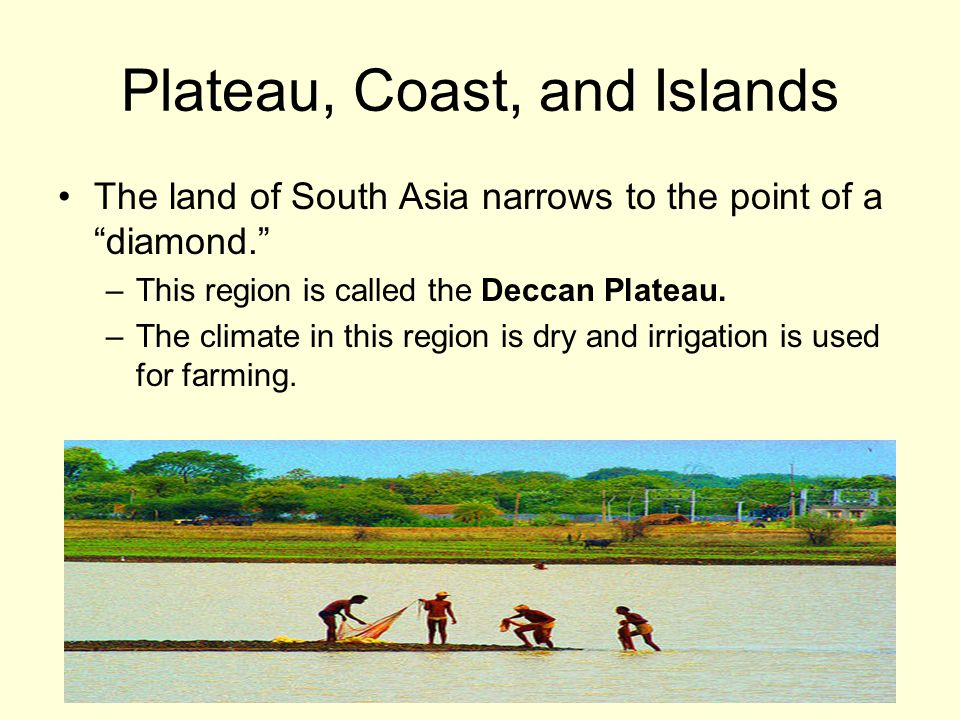 Plateau, Coast, and Islands The land of South Asia narrows to the point of a diamond. –This region is called the Deccan Plateau.