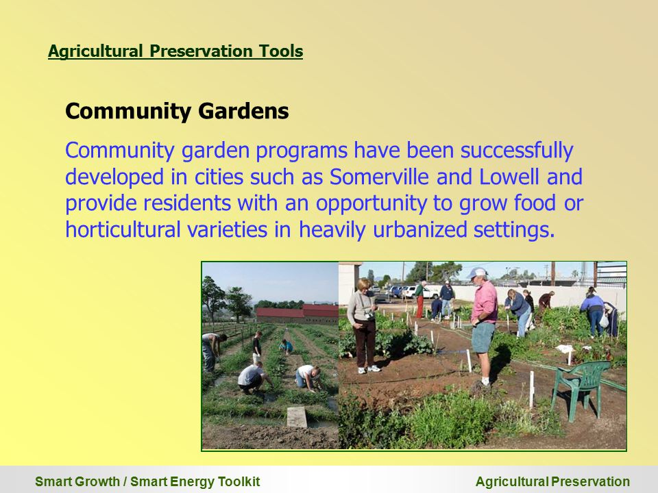 Smart Growth / Smart Energy Toolkit Agricultural Preservation Community Gardens Community garden programs have been successfully developed in cities such as Somerville and Lowell and provide residents with an opportunity to grow food or horticultural varieties in heavily urbanized settings.