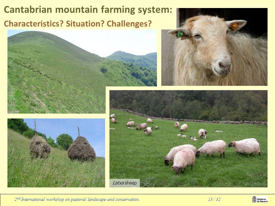 Latxa sheep 2 nd International workshop on pastoral landscape and conservation.