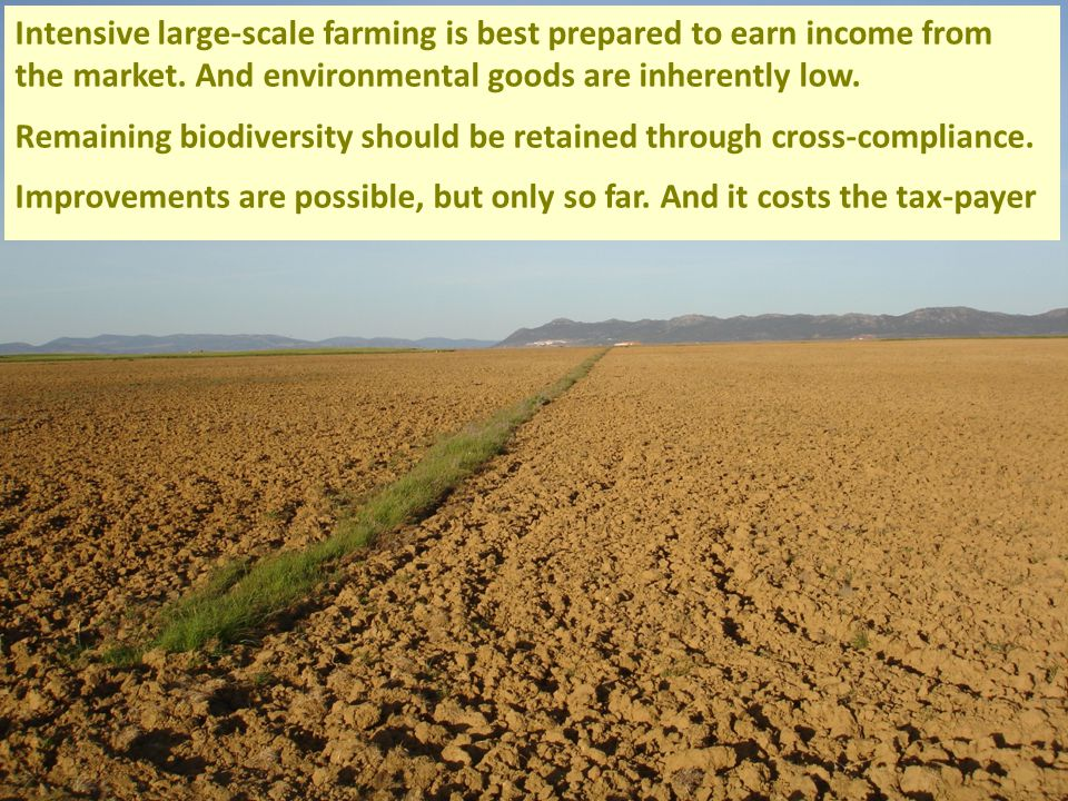 Intensive large-scale farming is best prepared to earn income from the market.