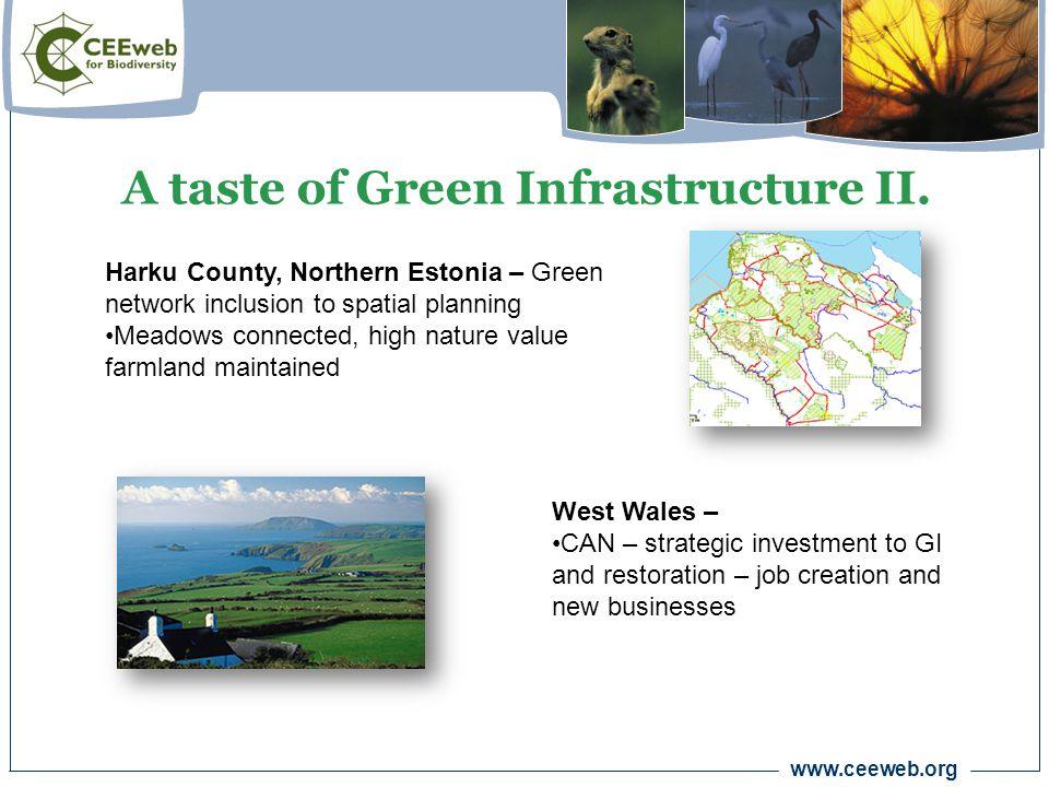 www.ceeweb.org A taste of Green Infrastructure II.
