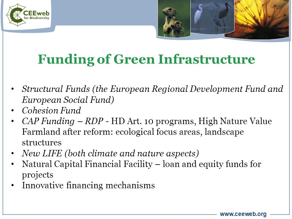 www.ceeweb.org Structural Funds (the European Regional Development Fund and European Social Fund) Cohesion Fund CAP Funding – RDP - HD Art.