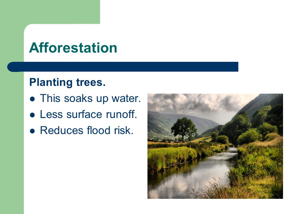 Afforestation Planting trees. This soaks up water. Less surface runoff. Reduces flood risk.