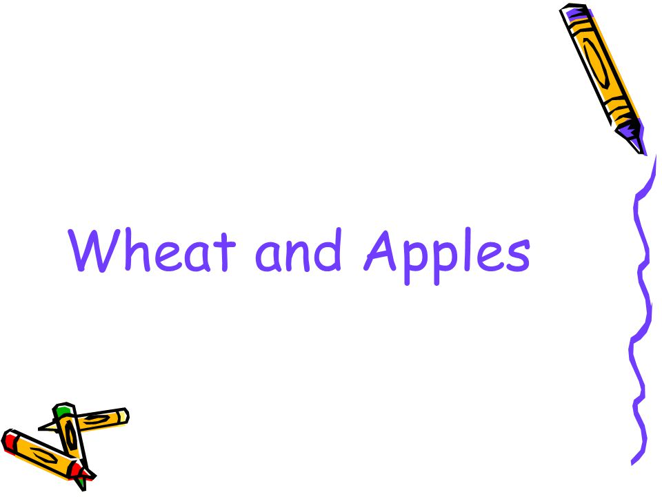Wheat and Apples