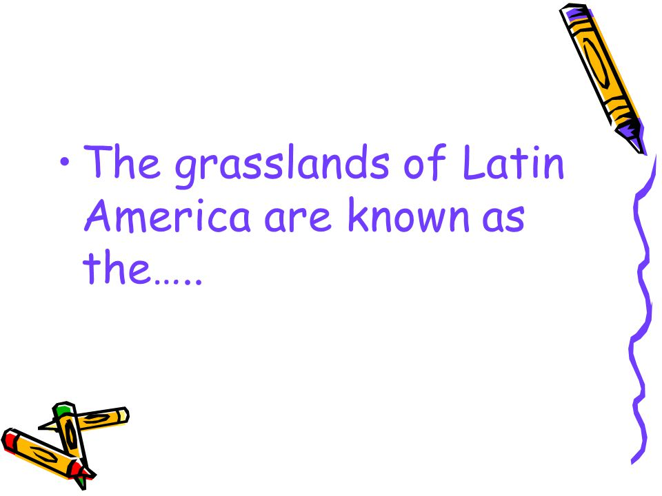 The grasslands of Latin America are known as the…..