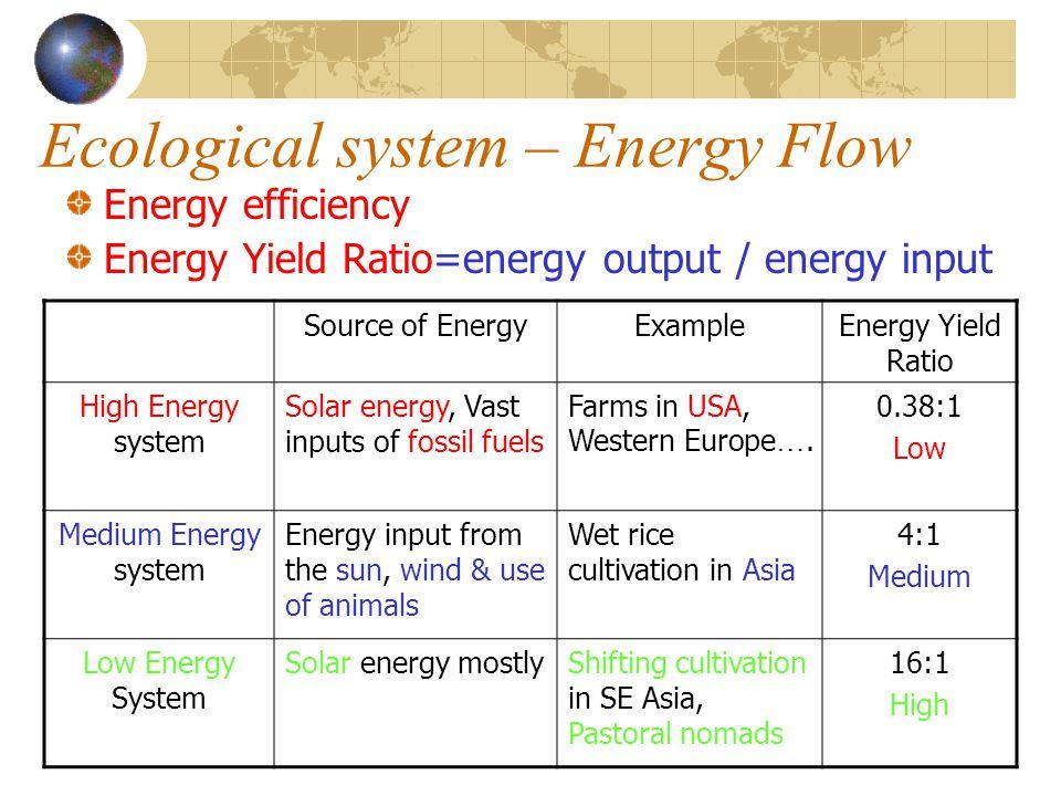 Ecological system – Energy Flow Energy efficiency Energy Yield Ratio=energy output / energy input Source of EnergyExampleEnergy Yield Ratio High Energ