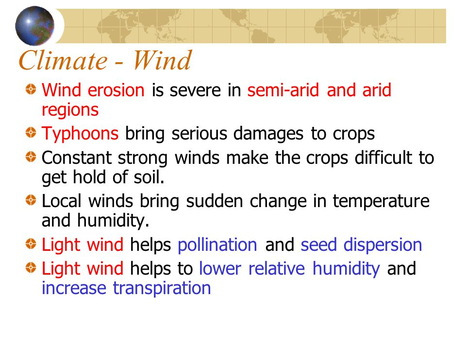 Climate - Wind Wind erosion is severe in semi-arid and arid regions Typhoons bring serious damages to crops Constant strong winds make the crops diffi