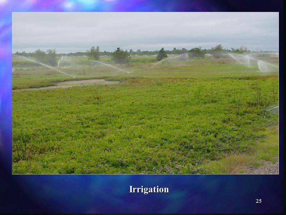 25 Irrigation