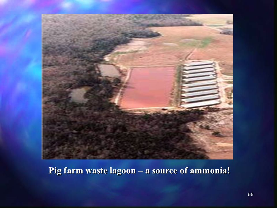 66 Pig farm waste lagoon – a source of ammonia!