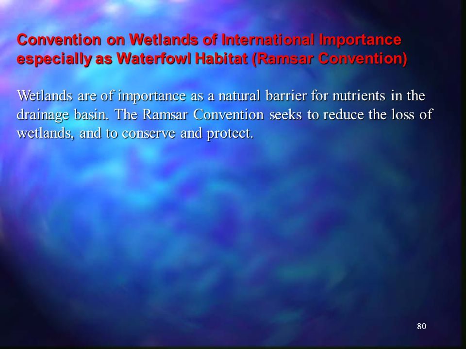 80 Convention on Wetlands of International Importance especially as Waterfowl Habitat (Ramsar Convention) Wetlands are of importance as a natural barrier for nutrients in the drainage basin.