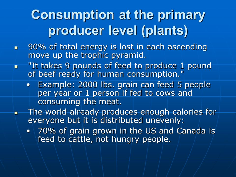 Consumption at the primary producer level (plants) 90% of total energy is lost in each ascending move up the trophic pyramid.