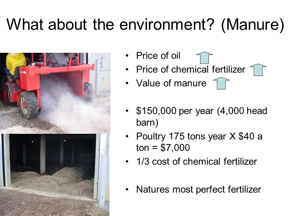 What about the environment? (Manure) Price of oil Price of chemical fertilizer Value of manure $150,000 per year (4,000 head barn) Poultry 175 tons ye