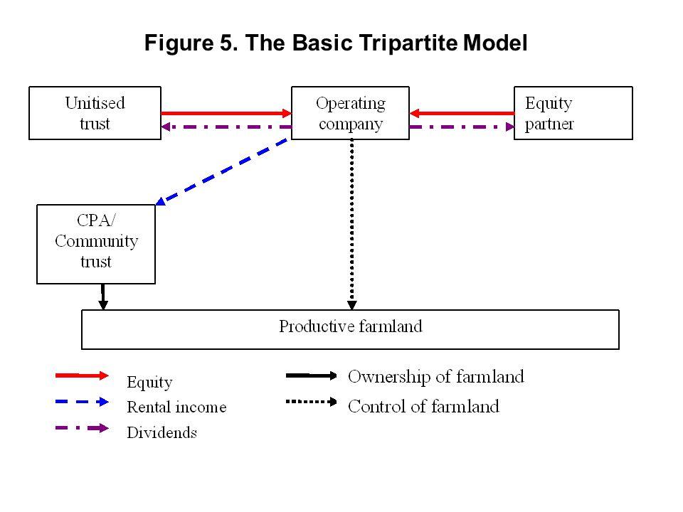 Figure 5. The Basic Tripartite Model