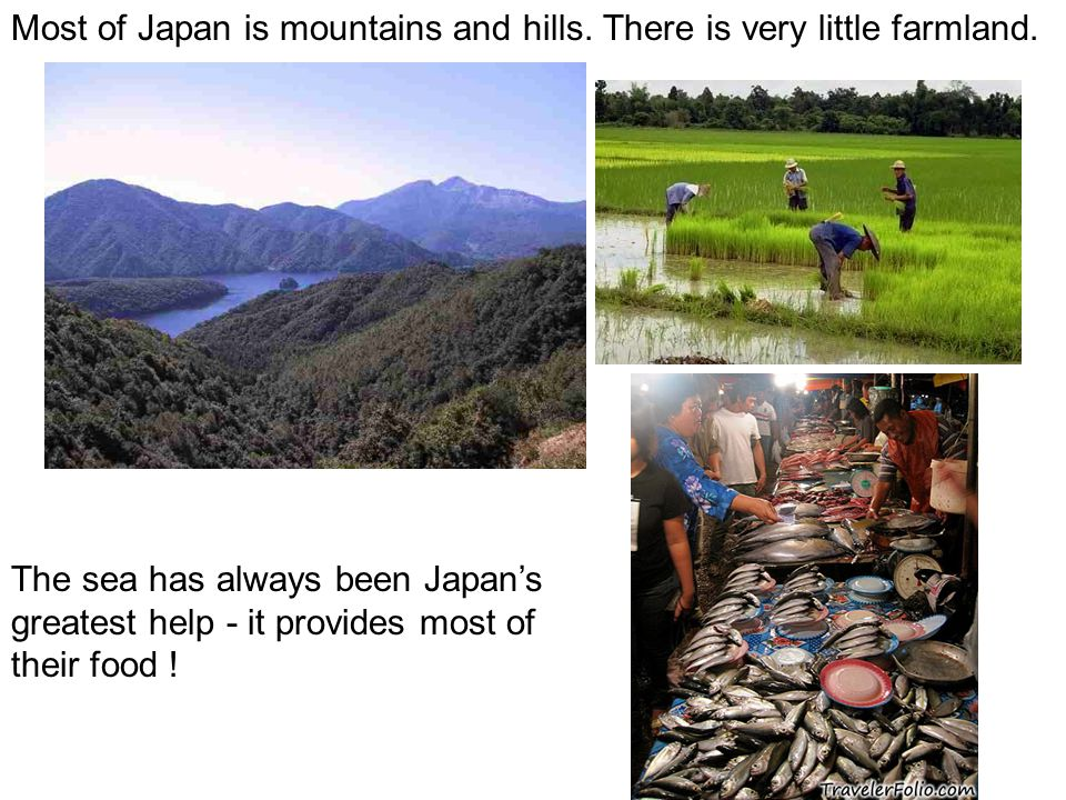 Most of Japan is mountains and hills. There is very little farmland. The sea has always been Japan's greatest help - it provides most of their food !