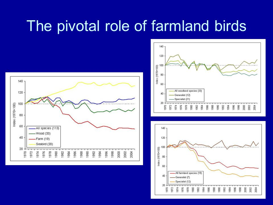 The pivotal role of farmland birds